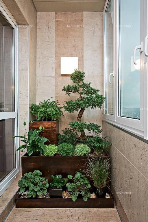 Оформление растениями теплого балкона..