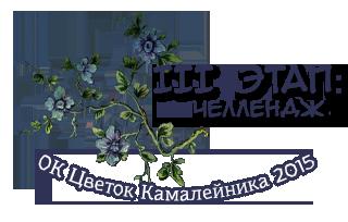 ОК Цветок Камалейника 2015