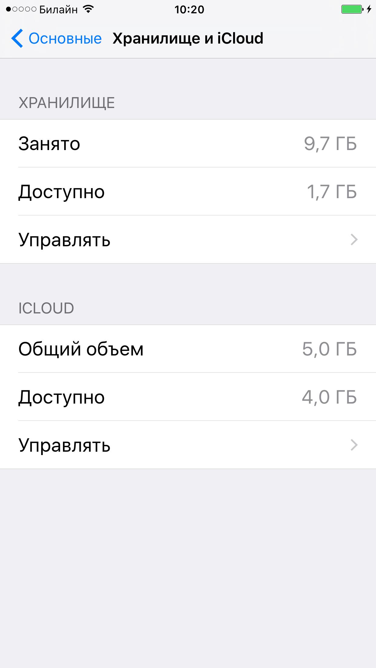 Хранилище на iPhone до очистки