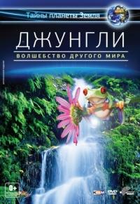Изображение для Джунгли 3D: Волшебство другого мира / The Jungle 3d: Magic Of Another World (2012) [Документальный, научно познавательный, живая природа, экология, Blu-Ray, 1080p] BD3D (кликните для просмотра полного изображения)