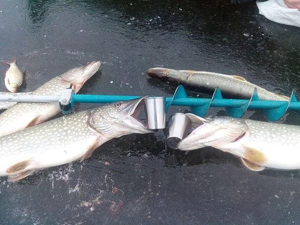 записи рыболовов