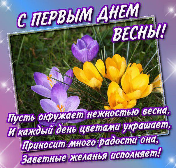 6ec65c5af259ed97fa89c461780845e4.jpg