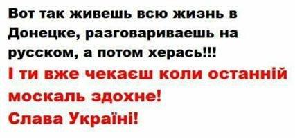 Жители Донбасса призвали голландцев поддержать Украину на референдуме - Цензор.НЕТ 9448
