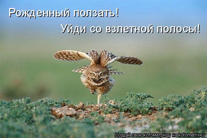 http://s8.hostingkartinok.com/uploads/images/2016/06/004d10b5a8ac9b6f4f8298dac29c9c16.jpg