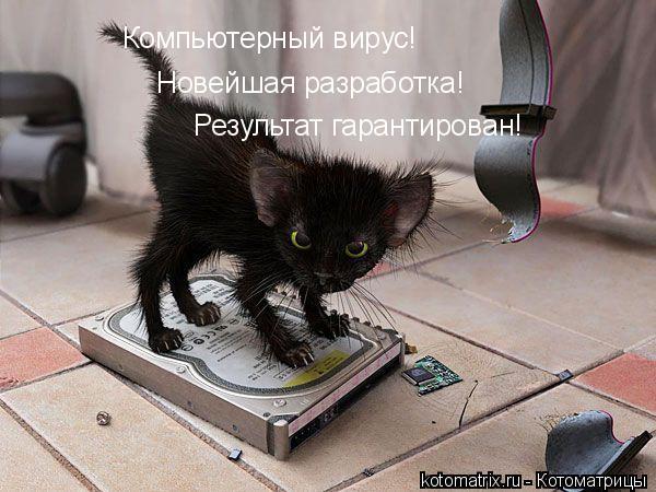 http://s8.hostingkartinok.com/uploads/images/2016/06/3a1a7c51154ae31c9fa7604f197b07fd.jpg
