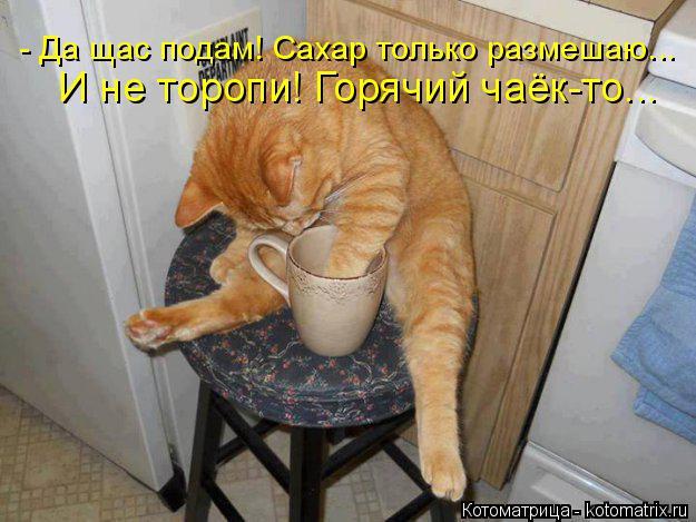 http://s8.hostingkartinok.com/uploads/images/2016/06/8f5fad796f0b9323a60bf453c2e4b3c1.jpg