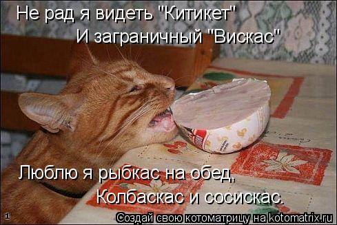 http://s8.hostingkartinok.com/uploads/images/2016/06/a652fc20e544d128de23884b902a6d41.jpg