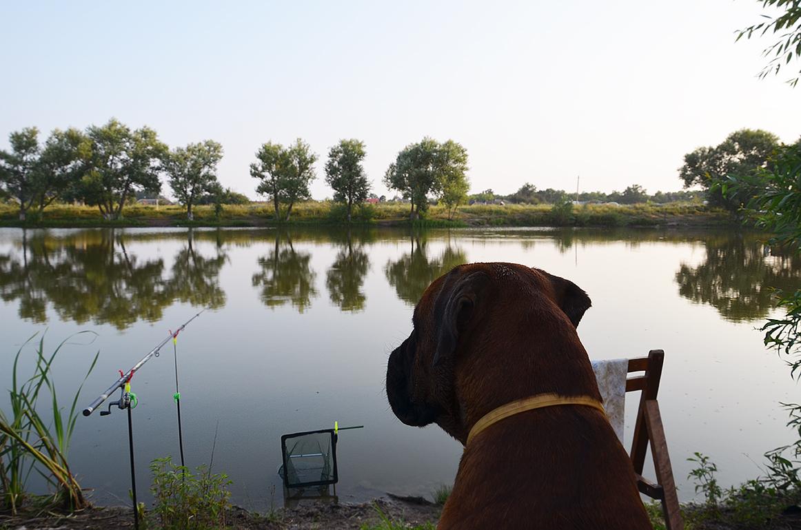 места рыбалки в раменском