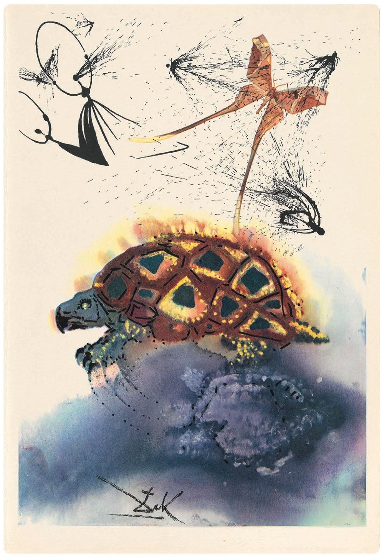 Повість черепахи квазі