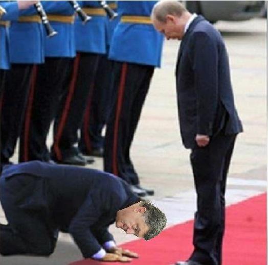 Порошенко: Я просил Путина прекратить стрелять на Донбассе - Цензор.НЕТ 9549