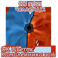 ОК Цветок Камалейника 2016
