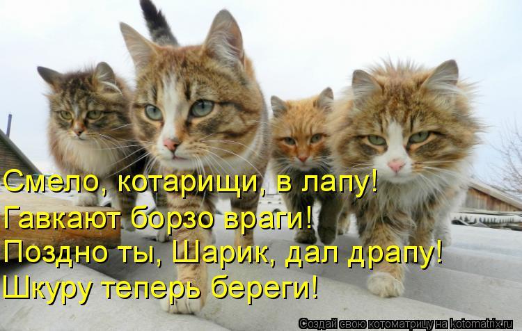 http://s8.hostingkartinok.com/uploads/images/2016/12/6e7d347b21725ba7e0e68caa979dc19c.jpg