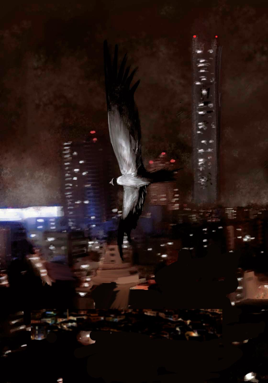 Вавилон: небесное погребение, Сhousou no baberu, 鳥葬のバベル