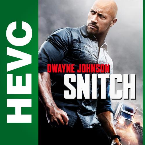 Стукач / Snitch (2013) BDRip HEVC 1080p | D