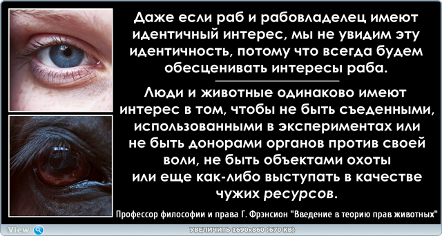 http://s8.hostingkartinok.com/uploads/images/2017/02/cccc10cdbee529691b28a34485311aad.png