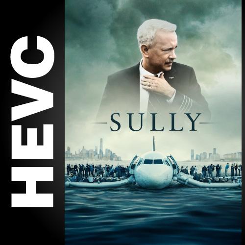Чудо на Гудзоне / Sully (2016) UHDVCRip HEVC 2160p | 4K | Лицензия