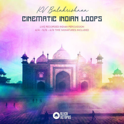 Black Octopus Sound - Cinematic Indian Loops (WAV)