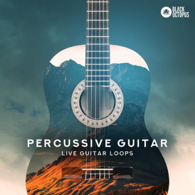 Black Octopus Sound - Percussive Guitar (WAV)