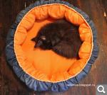 Делаем лежак для кошки своими руками ( фото) Кот Pinterest 84