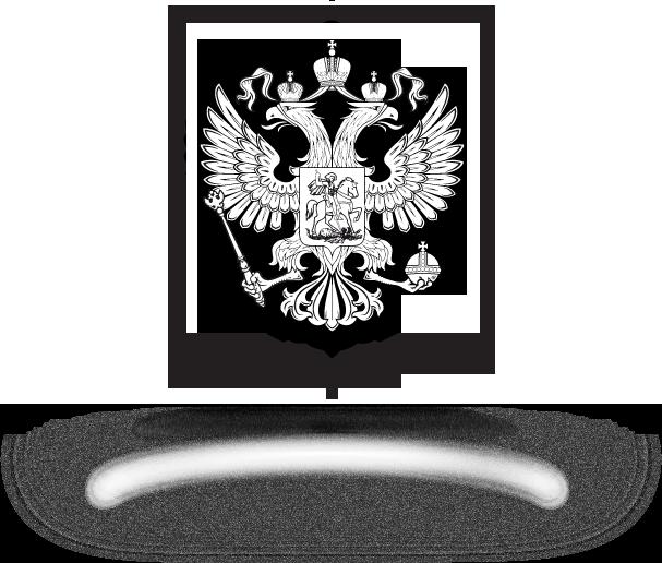 Картинки туалет, флаг и герб россии картинки для раскрашивания