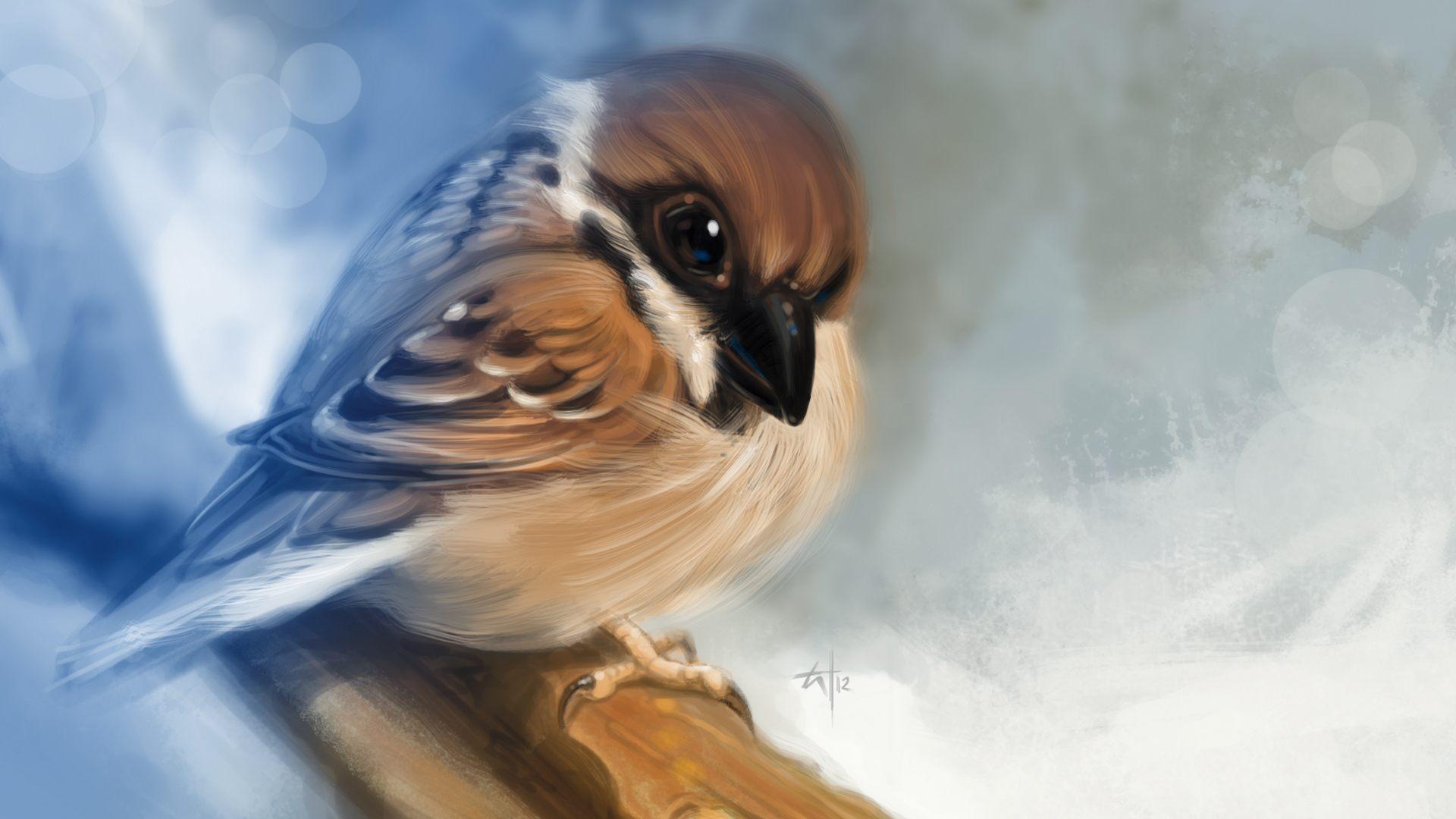 птица с распутившимися крыльями в хорошем качестве