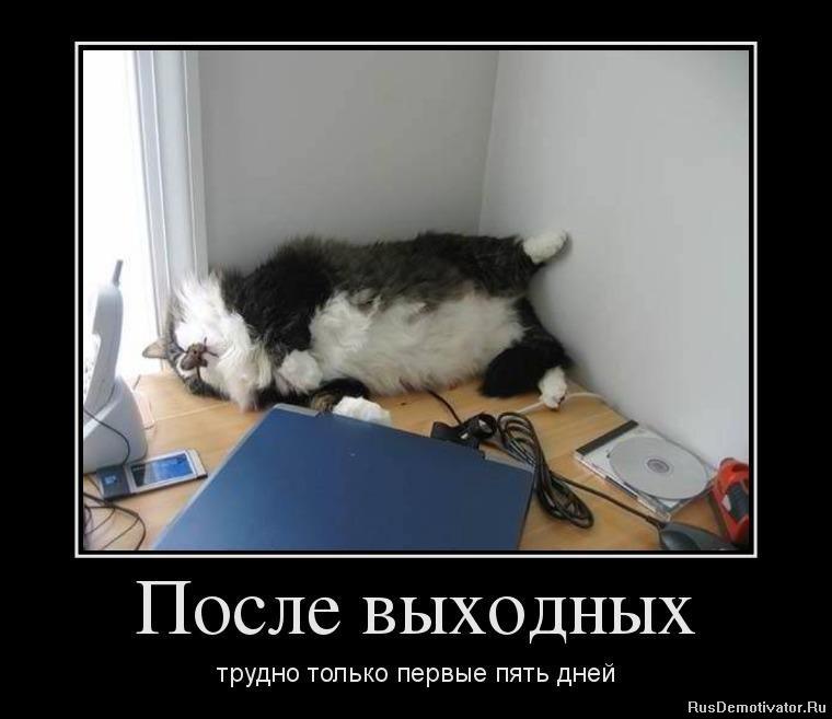 1349975423_96925064_posle-vyihodnyih.jpg