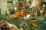 drugstore-museum_6_full_112.jpg