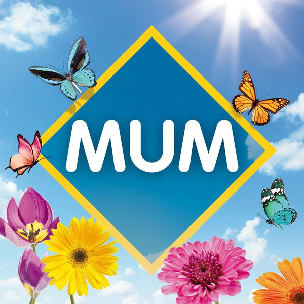 VA - Mum: The Collection (2017/FLAC)