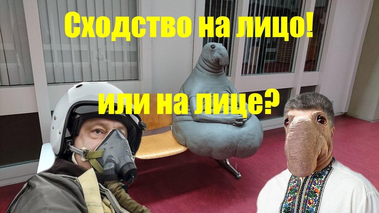 Порошенко: Ждем от суда в Гааге решений, которые остановят поставки оружия и позволят прекратить притеснения крымских татар - Цензор.НЕТ 949