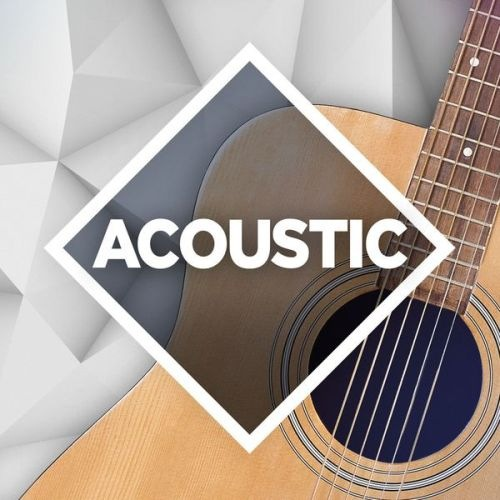 VA - Acoustic: The Collection (2017/FLAC)