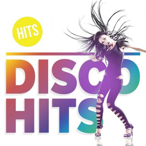 VA - Disco Hits (2017)