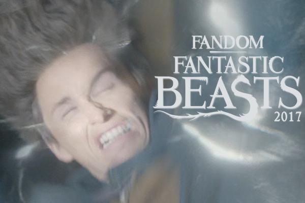 fandom Fantastic Beasts 2017