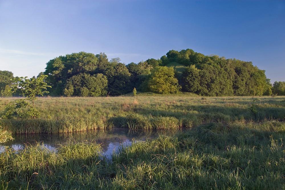 Пам'ятка природи Данчичева гора