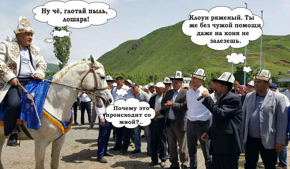 кыргызские прикольные картинки хамелеон достигается