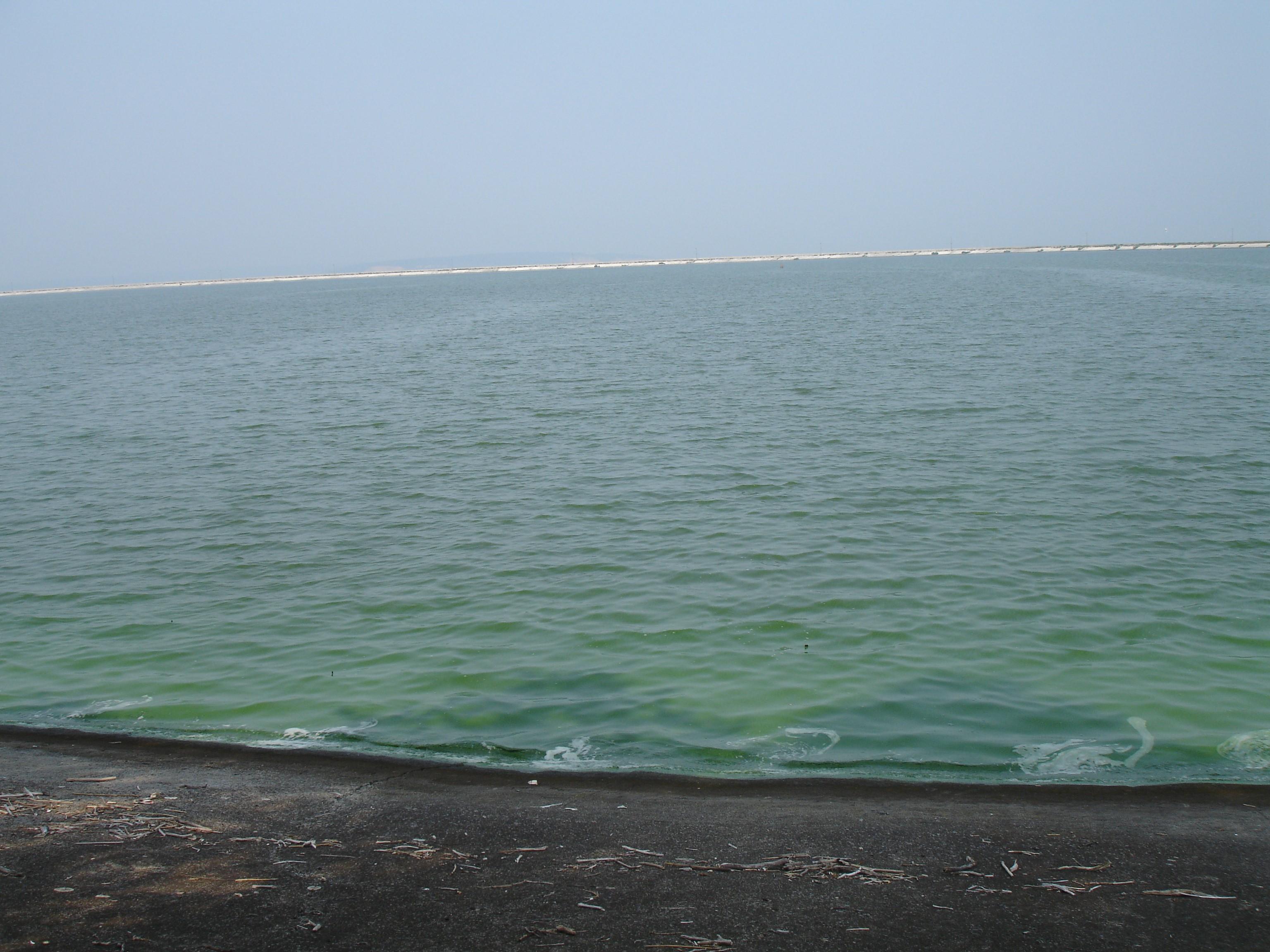 Кременчуцьке водосховище-море