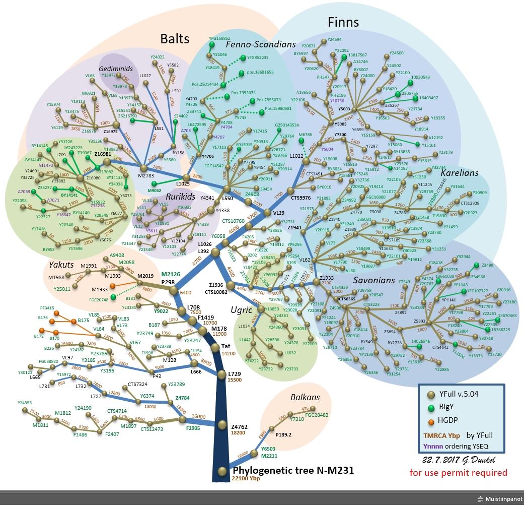 SNP-N-TREE-FIN.jpg