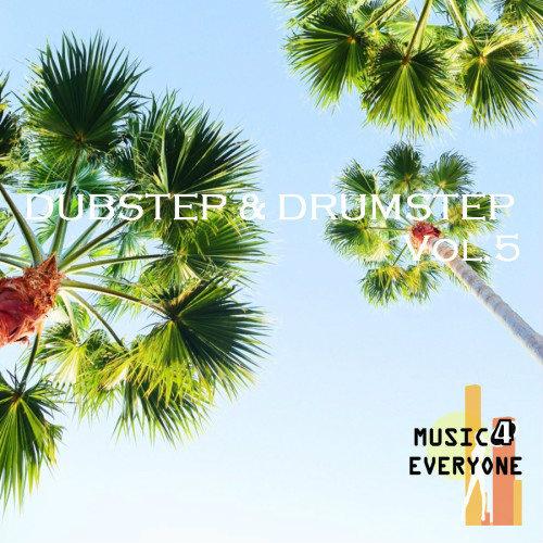 VA - Music For Everyone - Dubstep & Drumstep Vol.5 (2017)