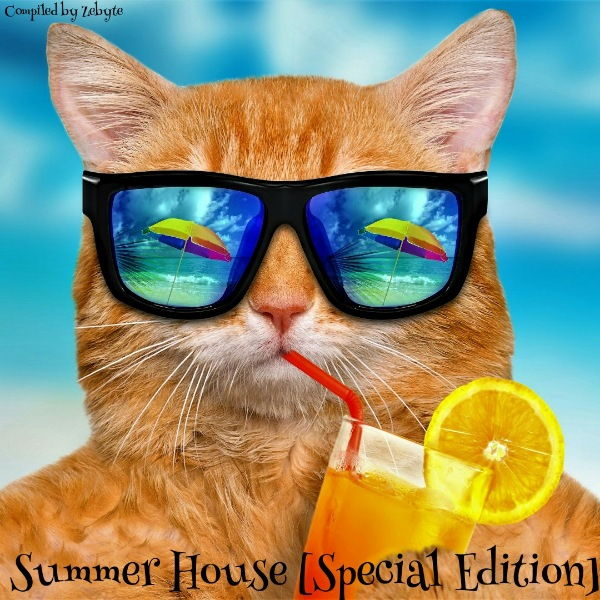 VA - Summer House: Special Edition [Compiled by ZeByte] (2017)