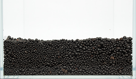zhyvoj-grunt (1).jpg