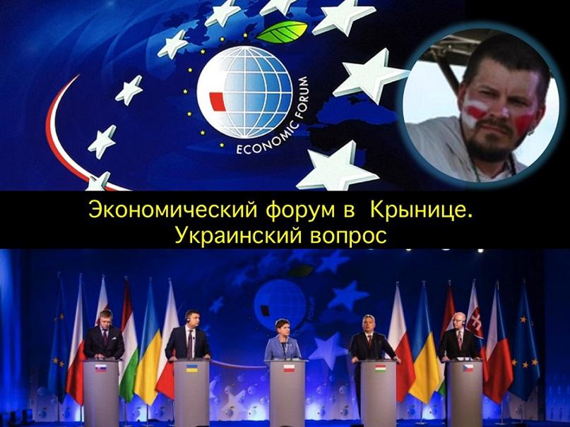 Артур Прузовский про украинские вопросы на экономическом форуме в Польше