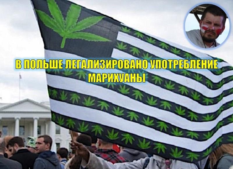 Артур Прузовский о легализации марихуаны в Польше и готовности Украины к такому шагу
