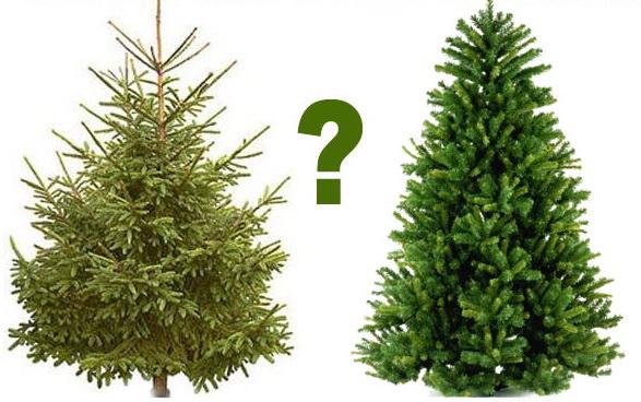 Какую елку купить, искусственную или живую?