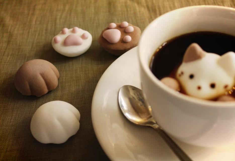 Marshmallow-Cats.jpg