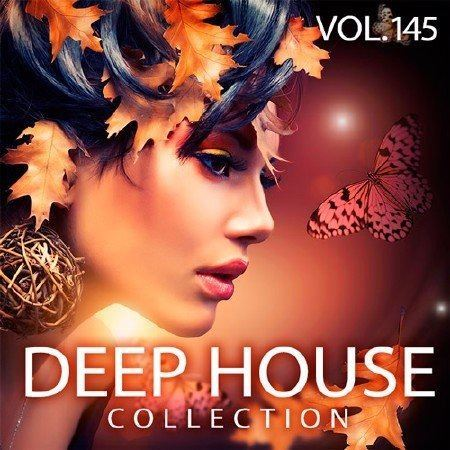 VA - Deep House Collection Vol.145 (2017)
