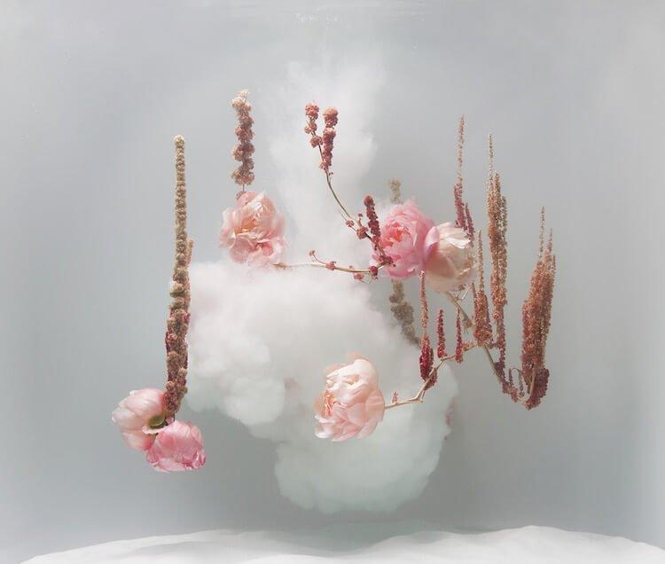 underwater-flower-art-Anne-ten-Donkelaar-9.jpg