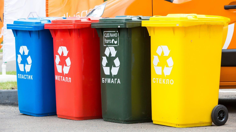 Решение мусорной проблемы в России видят путем применения скандинавского опыта