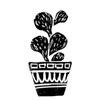 кактус 1