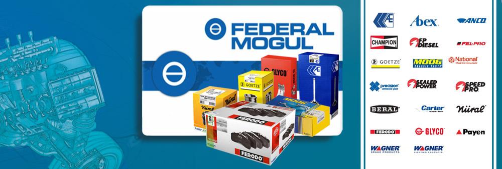 Federal Mogul FM TruckAutoPart.jpg