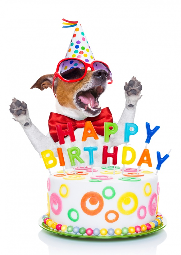 dog-cake-happy-birthday-postcard-greeting-card-send-online-2637_57.jpg