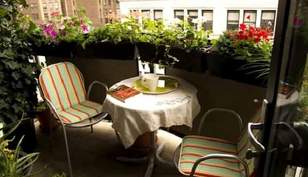 балкон-цветы